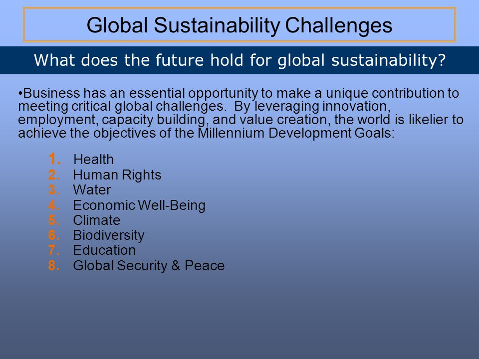 Global Sustainability Challenges