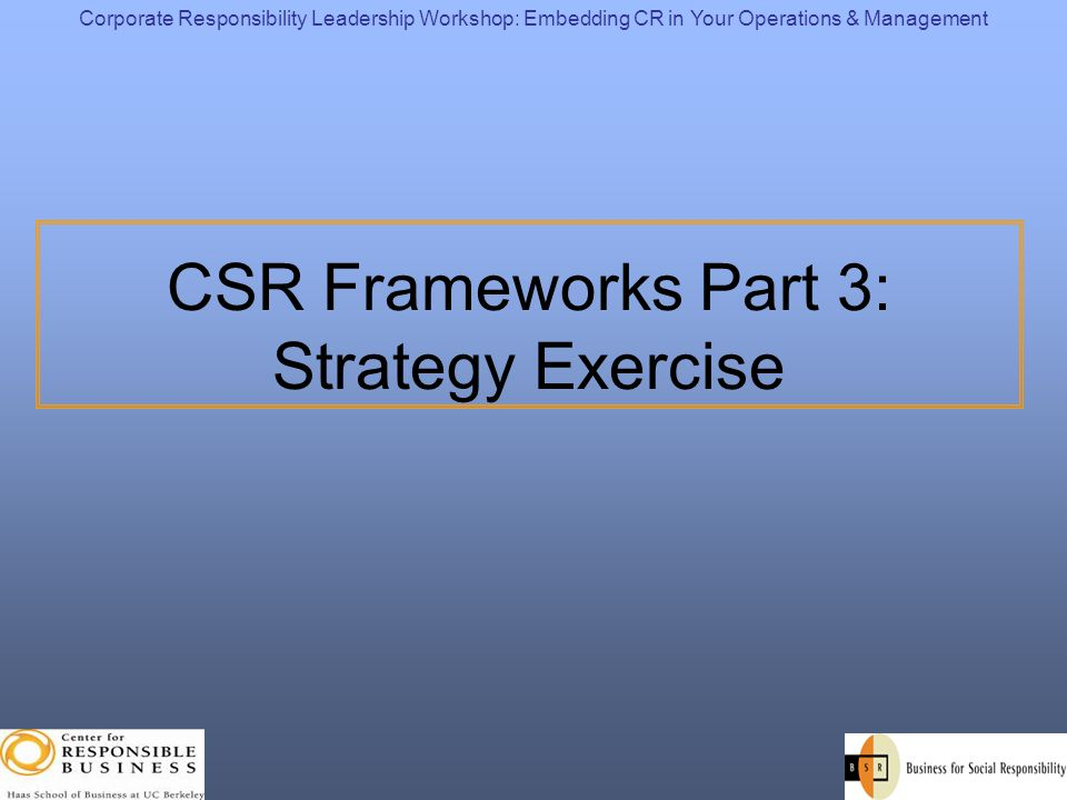 CSR Frameworks Part 3: Strategy Exercise