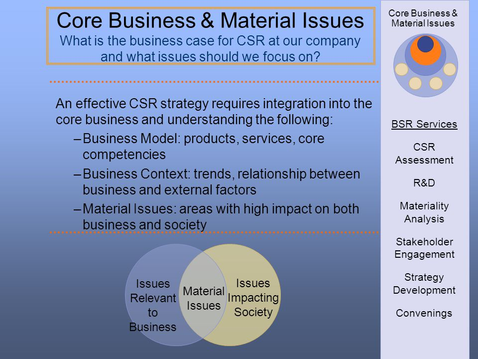 BSR Services CSR Assessment. R&D. Materiality Analysis. Stakeholder Engagement. Strategy Development.