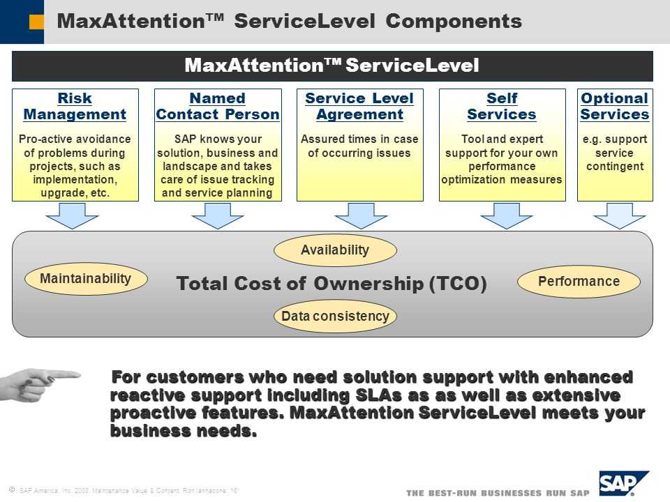 Ron Iannacone Service Support Product Management Sap America Inc