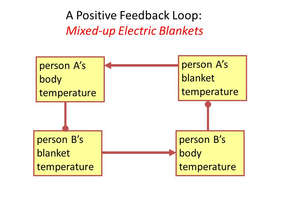 Generalized diagram of the earth system ppt video online download a positive feedback loop mixed up electric blankets ccuart Images