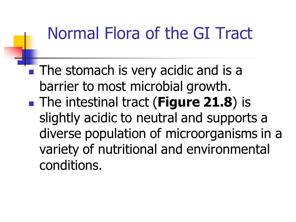 Normal Flora of the GI Tract