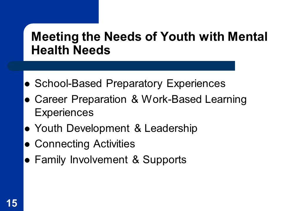 Meeting the Needs of Youth with Mental Health Needs