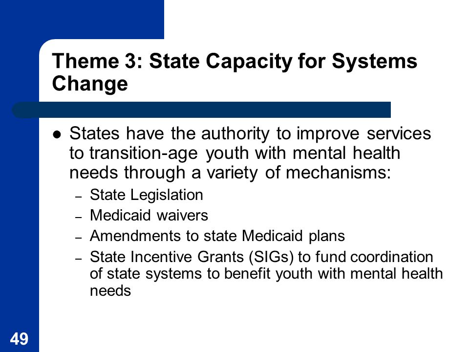Theme 3: State Capacity for Systems Change