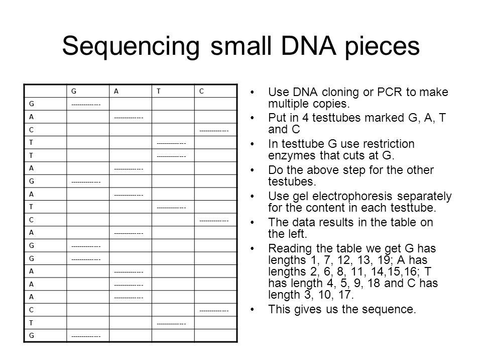 Sequencing small DNA pieces