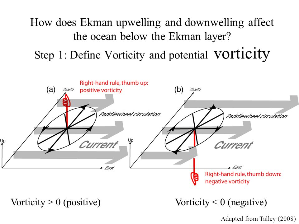 How does Ekman upwelling and downwelling affect the ocean below the Ekman layer Step 1: Define Vorticity and potential vorticity