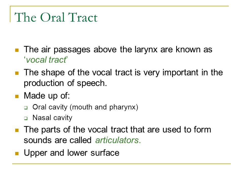 The Oral Tract The air passages above the larynx are known as 'vocal tract'