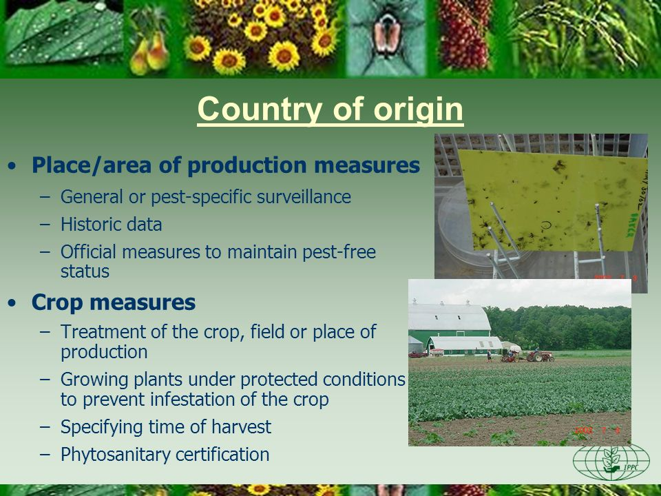 Country of origin Place/area of production measures Crop measures