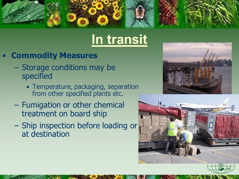In transit Commodity Measures Storage conditions may be specified