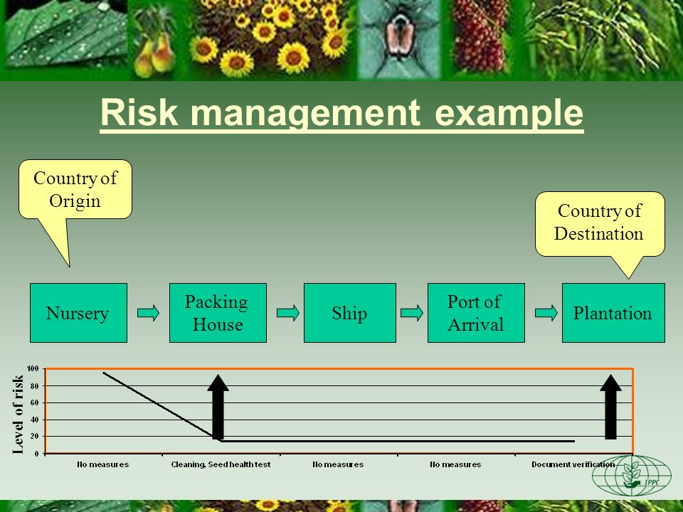 Risk management example