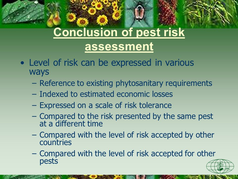 Conclusion of pest risk assessment