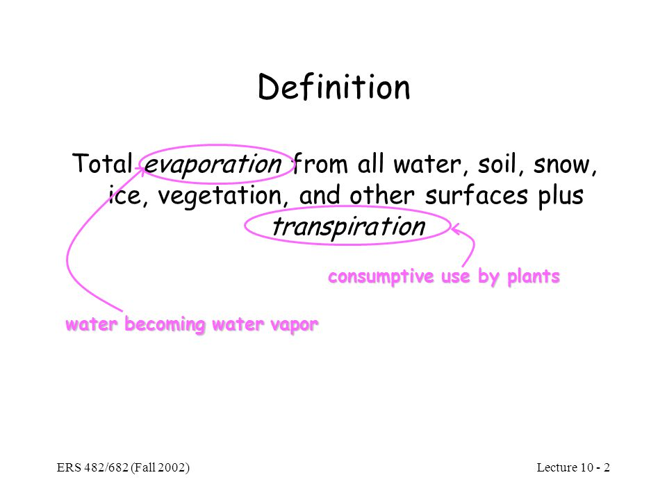 water becoming water vapor consumptive use by plants