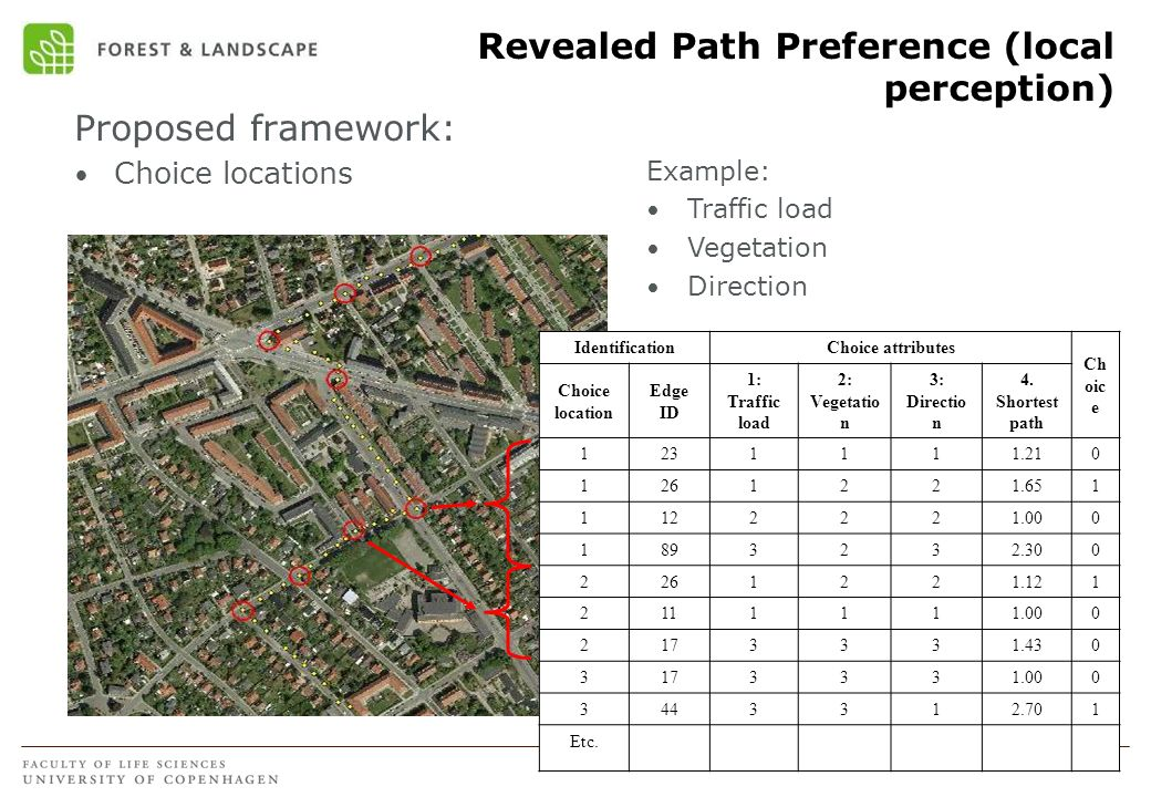 Revealed Path Preference (local perception)