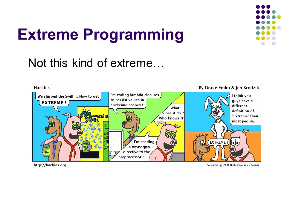 Extreme Programming Not this kind of extreme…