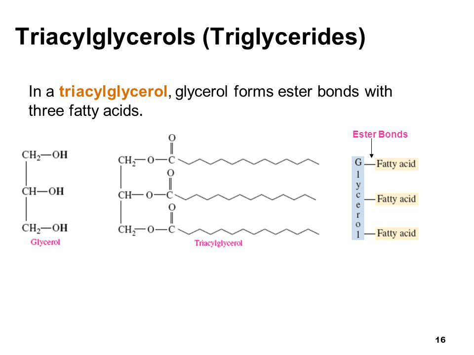 Which Triglycerides Are Solid At Room Temperature