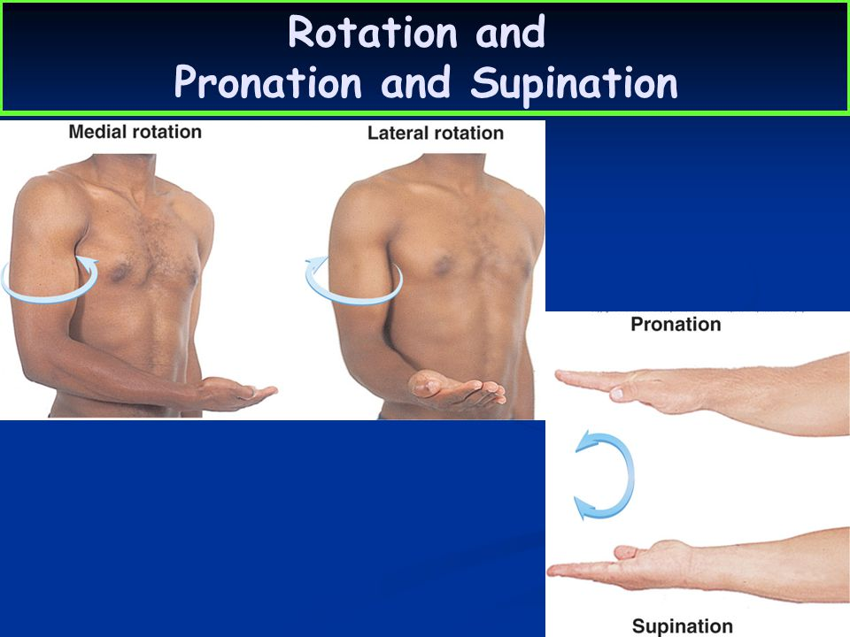 Rotation and Pronation and Supination