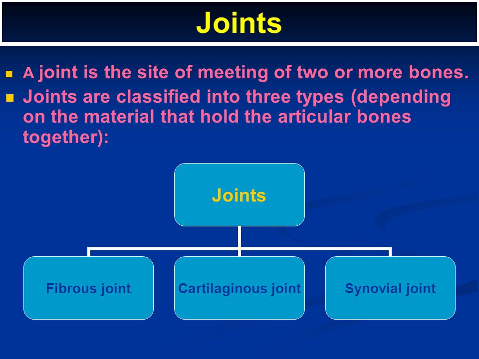 Joints A joint is the site of meeting of two or more bones.