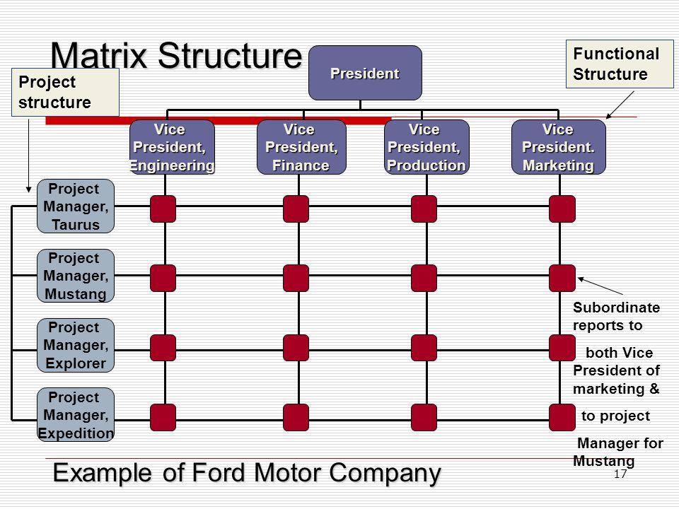 Matrix Structure Example of Ford Motor Company Functional Structure