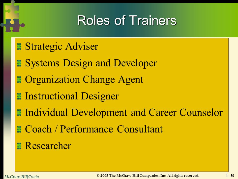 Roles of Trainers Strategic Adviser Systems Design and Developer
