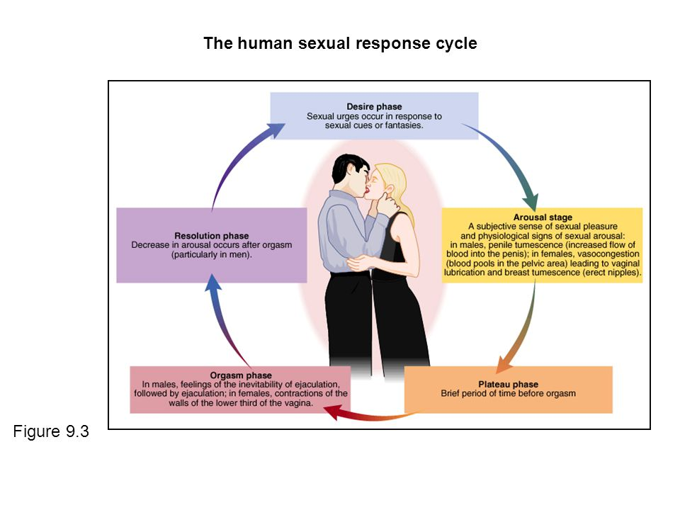 Classification of human sexuality