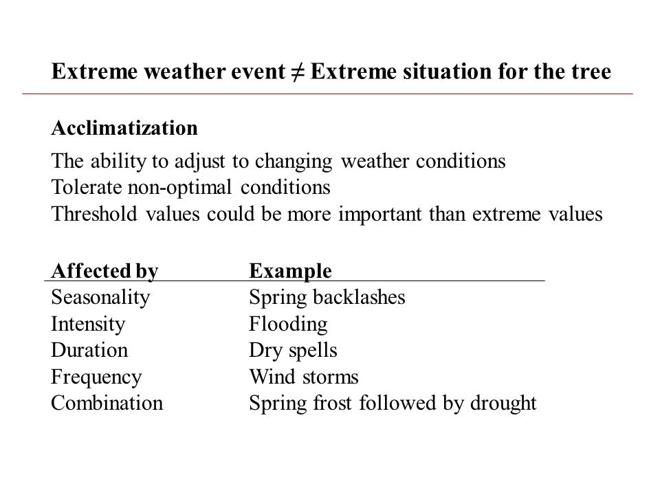 Extreme weather event ≠ Extreme situation for the tree