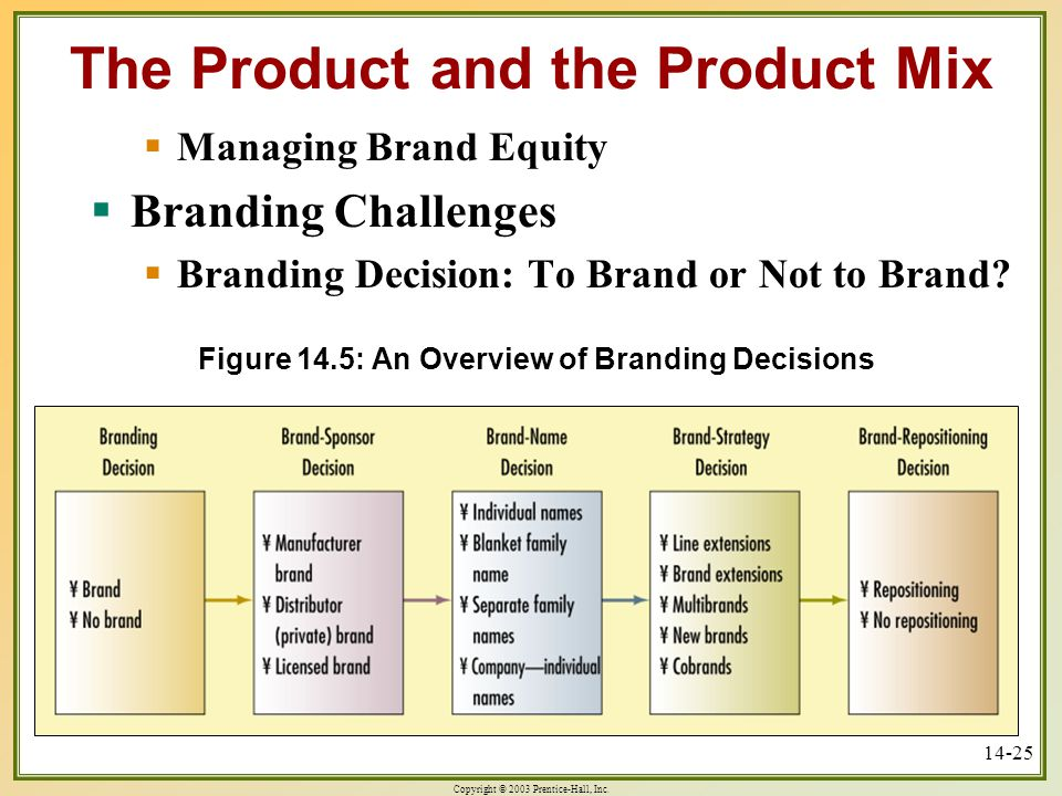 Figure 14.5: An Overview of Branding Decisions