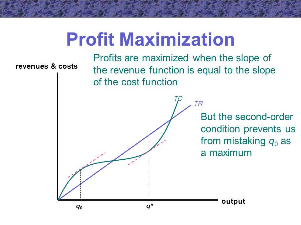 10 profit maximization