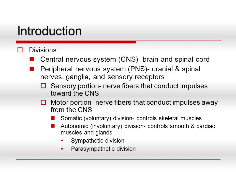 nerves that carry impulses toward the cns only are