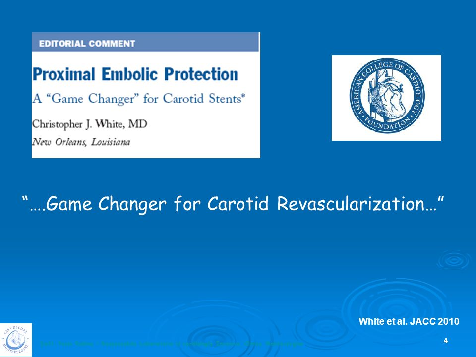 ….Game Changer for Carotid Revascularization…