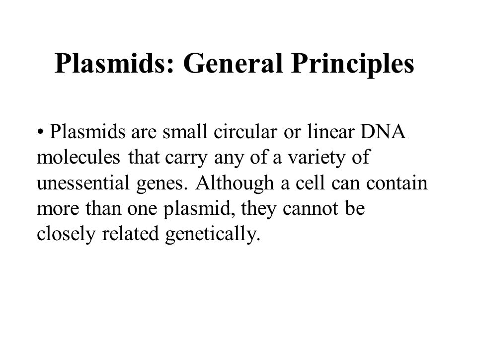 ugene how to show linear plasmid