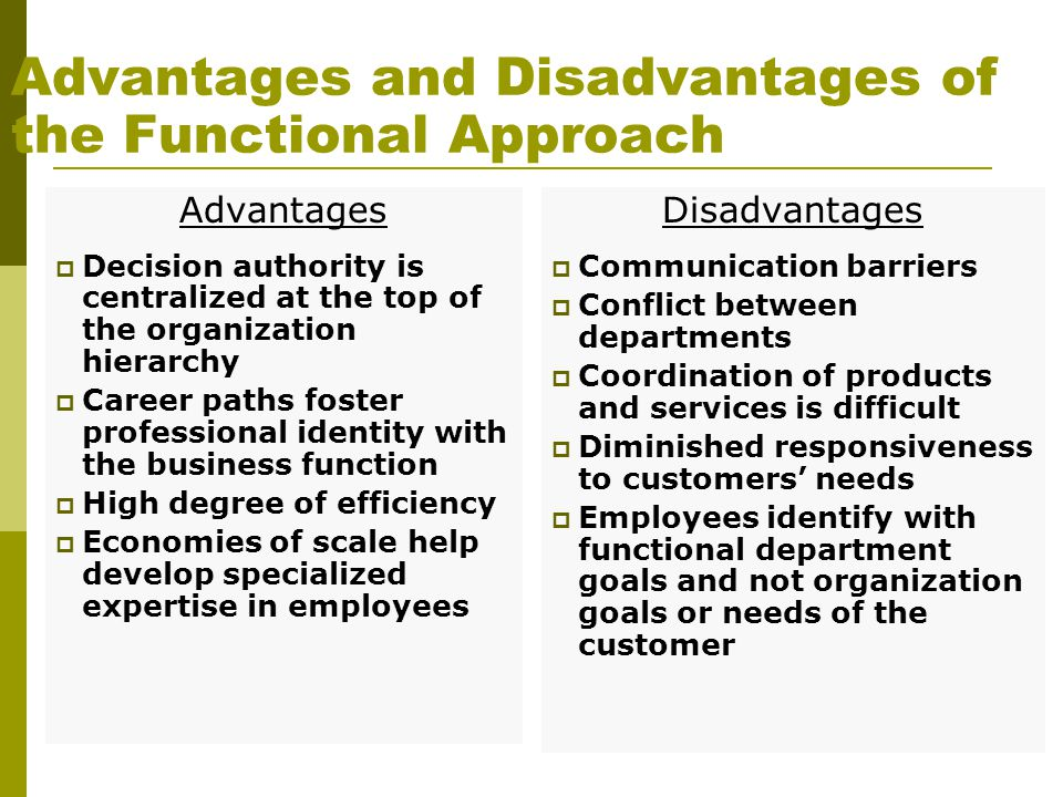 Advantages and Disadvantages of the Functional Approach