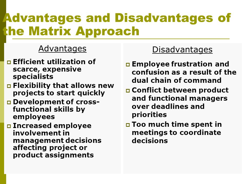 Advantages and Disadvantages of the Matrix Approach