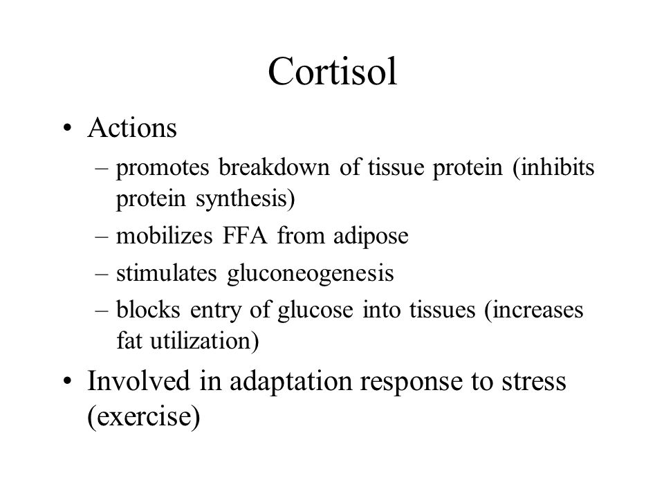 Cortisol Actions Involved in adaptation response to stress (exercise)