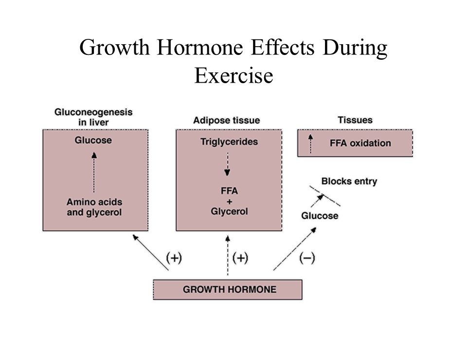 Growth Hormone Effects During Exercise