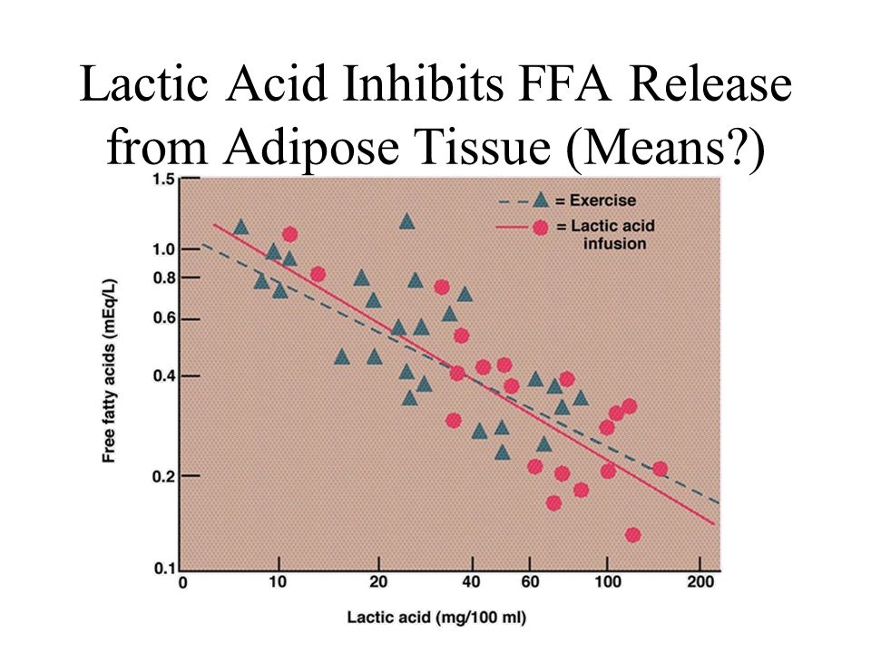 Lactic Acid Inhibits FFA Release from Adipose Tissue (Means )