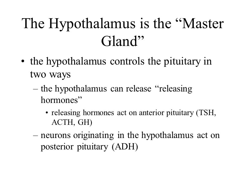 The Hypothalamus is the Master Gland