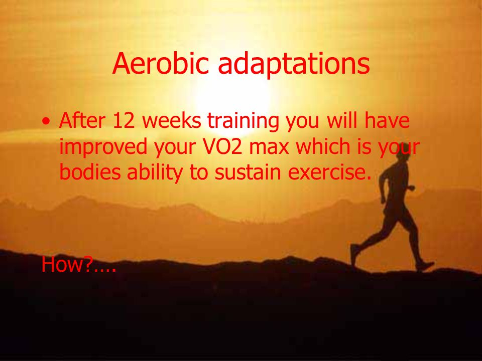 Aerobic adaptations After 12 weeks training you will have improved your VO2 max which is your bodies ability to sustain exercise.