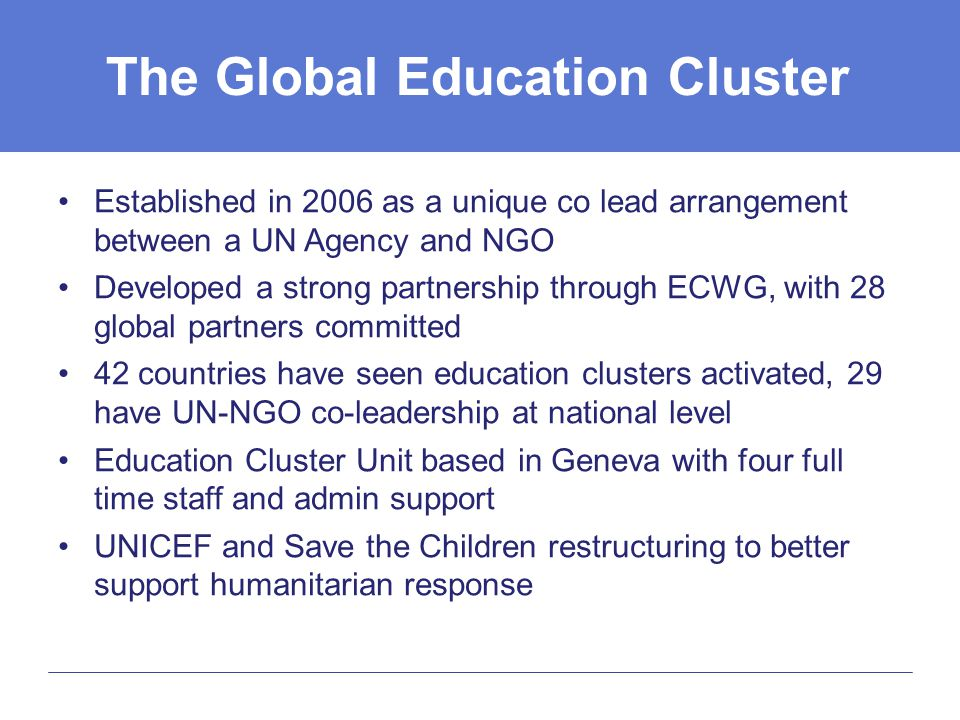 The Global Education Cluster