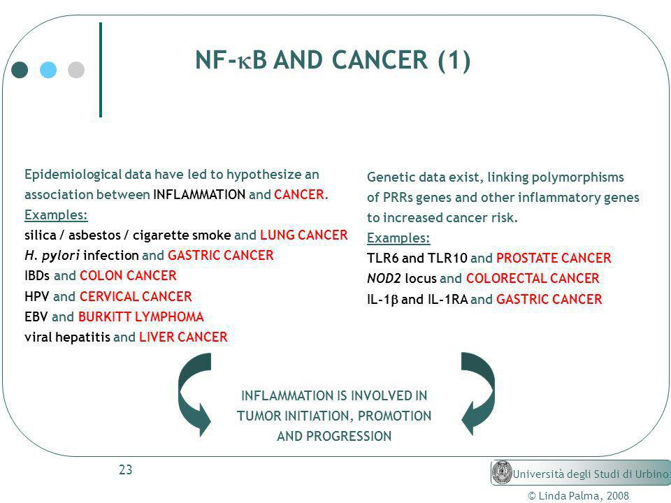 INFLAMMATION IS INVOLVED IN TUMOR INITIATION, PROMOTION
