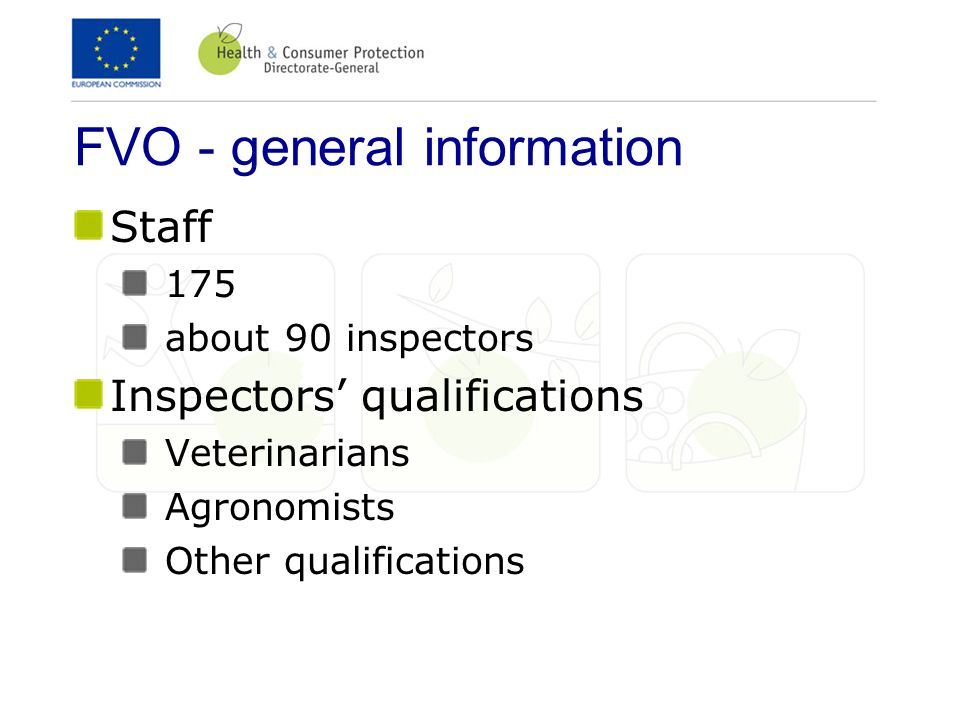 FVO - general information