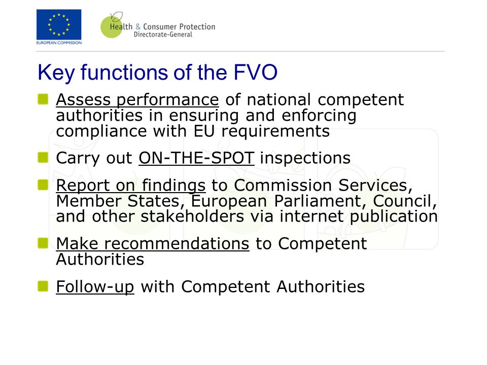 Key functions of the FVO