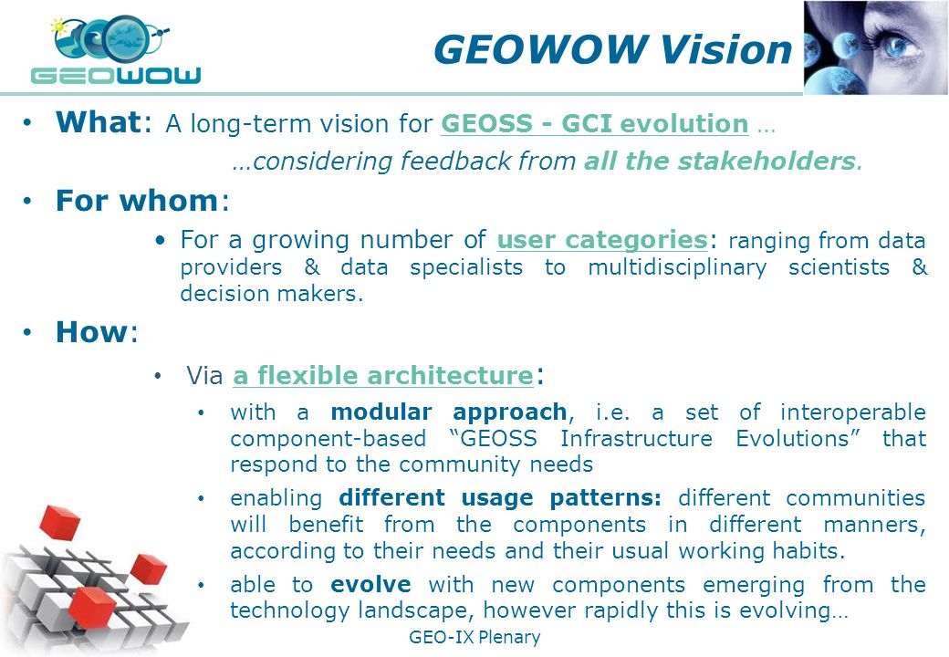 GEOWOW Vision ooooo What: A long-term vision for GEOSS - GCI evolution … …considering feedback from all the stakeholders.____.