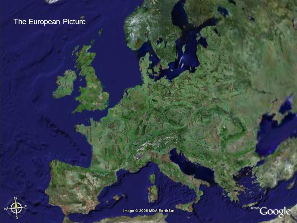 The European Picture