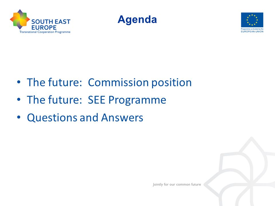 The future: Commission position The future: SEE Programme