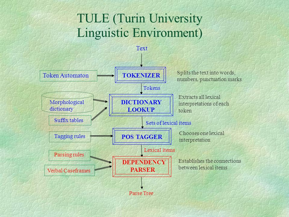 TULE (Turin University Linguistic Environment)