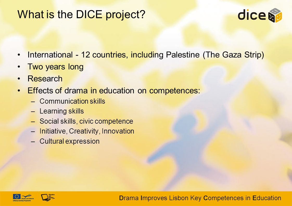 What is the DICE project