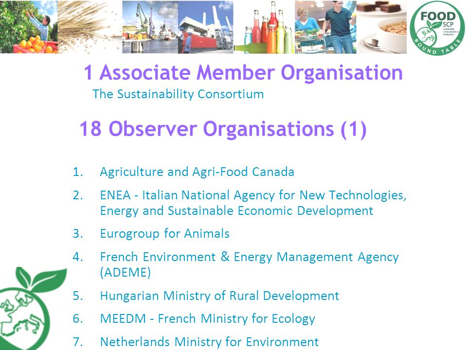 1 Associate Member Organisation 18 Observer Organisations (1)