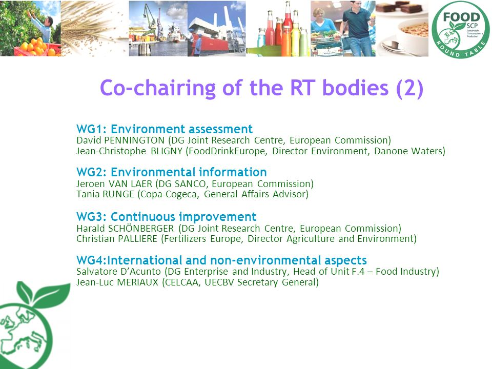 Co-chairing of the RT bodies (2)