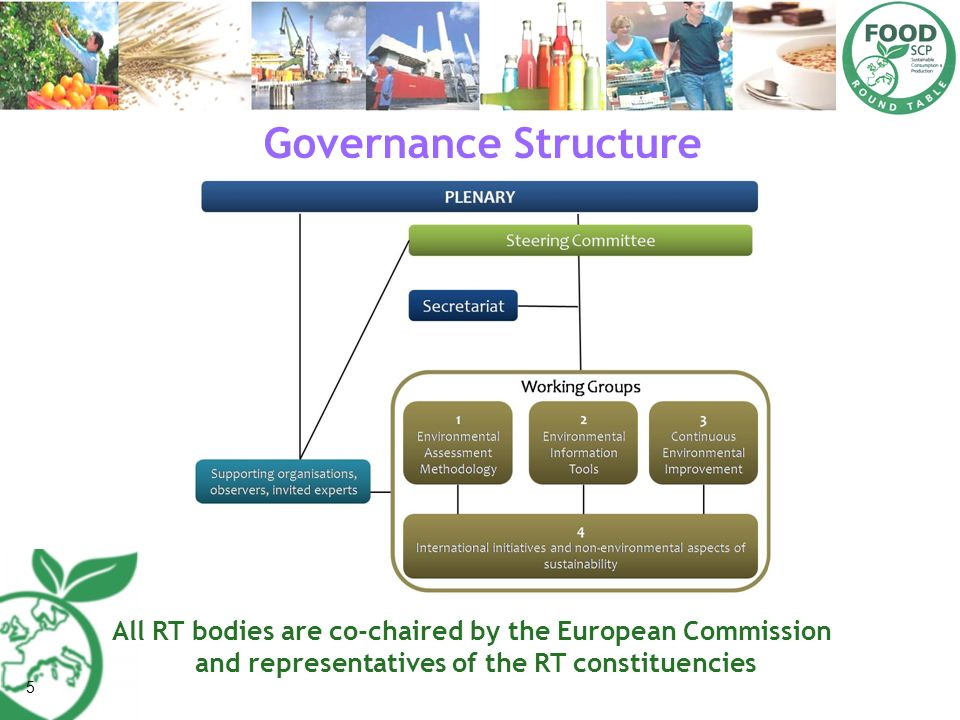Governance Structure All RT bodies are co-chaired by the European Commission. and representatives of the RT constituencies.