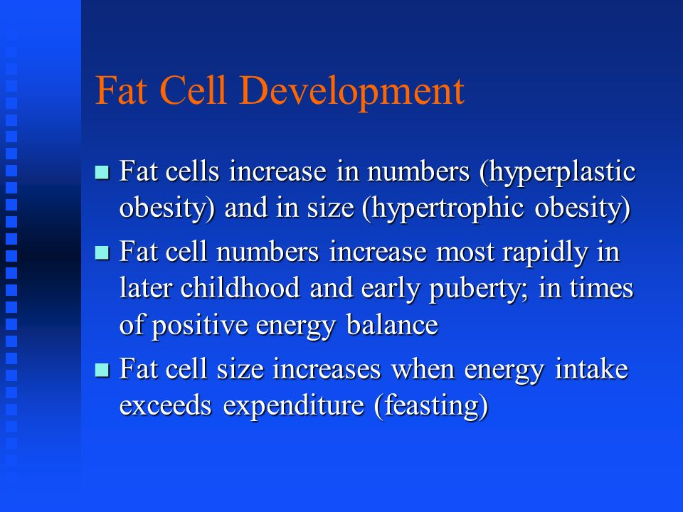 Fat Cell Development Fat cells increase in numbers (hyperplastic obesity) and in size (hypertrophic obesity)
